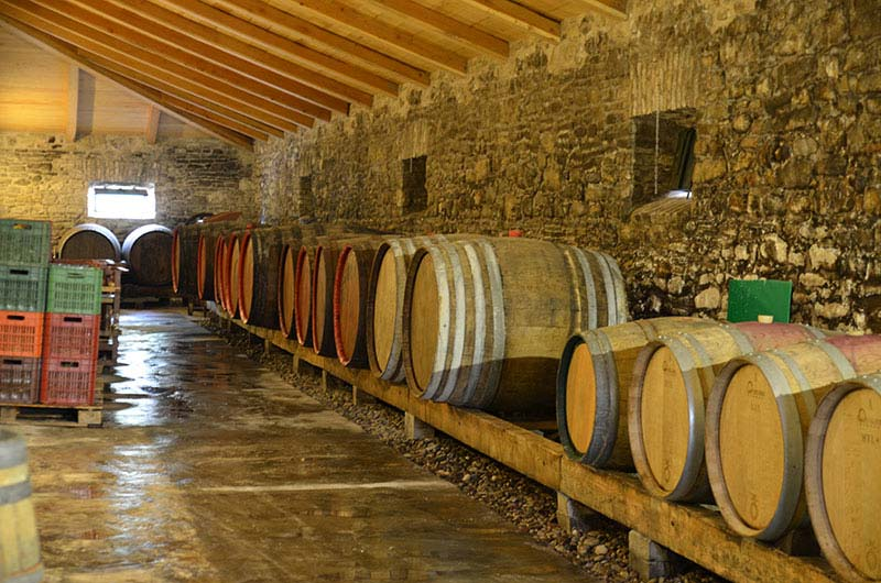 wine tasting tours in Corfu
